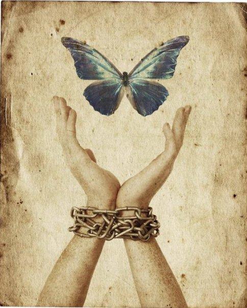 libertc3a0-farfalla-catena-1